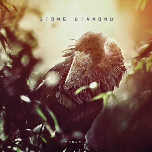 Stone Diamond CD 2014